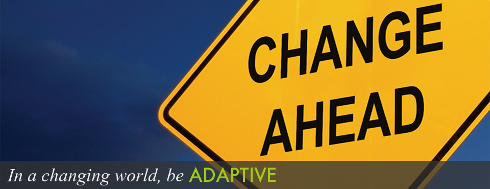 adapting to change is a great quote but not by darwin asymmetry
