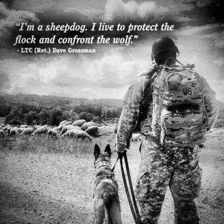 lt. col grossmans essay on wolves sheep and sheepdogs