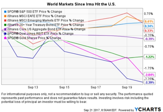 market returns since irma