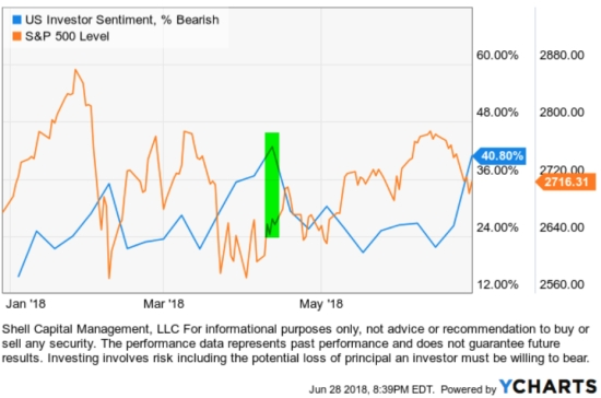 bearish investor sentiment